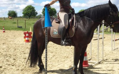 14.09.2019 – Working Equitation Schnupperkurs